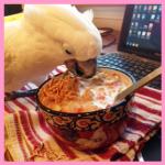angel-breakfast