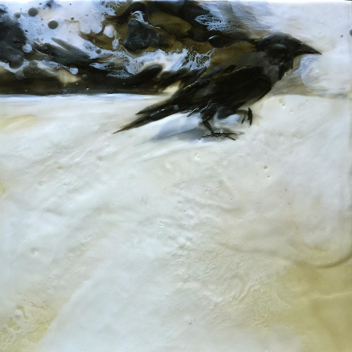 'Study of Crow'